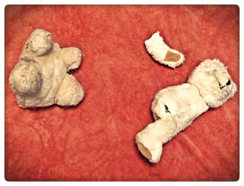 This is all that remains of the victims of a double homicide.  The whereabouts of their missing parts are unknown at this time.
