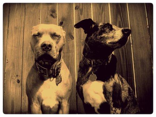 Charley and Zella