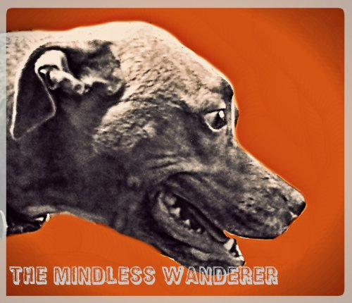 The Mindless Wanderer