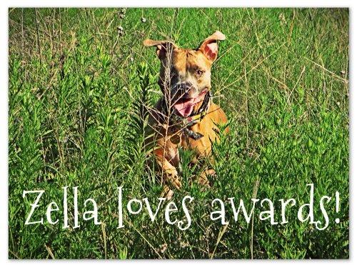 Zella loves awards